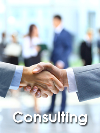 Industry: Consultants Tender